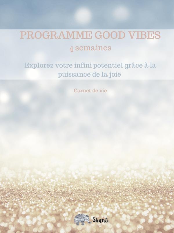 Programme joie Carnet de Vie 80 pages