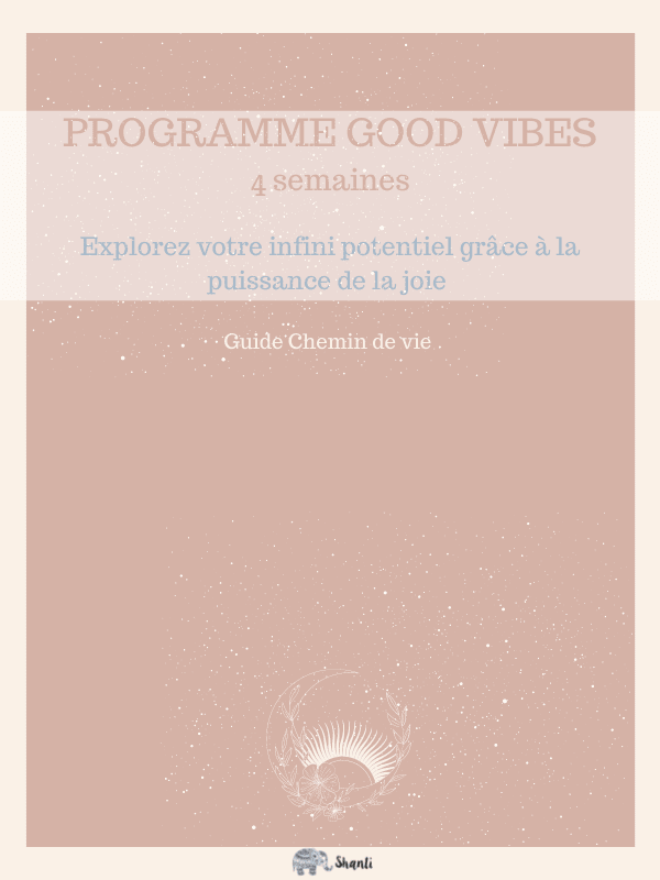 guide chemin de vie et mémo Programme joie 30 pages